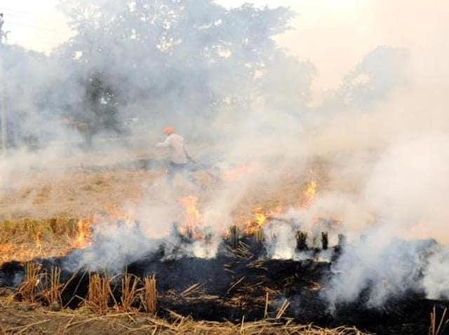 Sohan Singh, 50, and his son Gurpreet Singh,22, both residents of Bhangchari village in Muktsar had succumbed to burn injuries on Tuesday.
