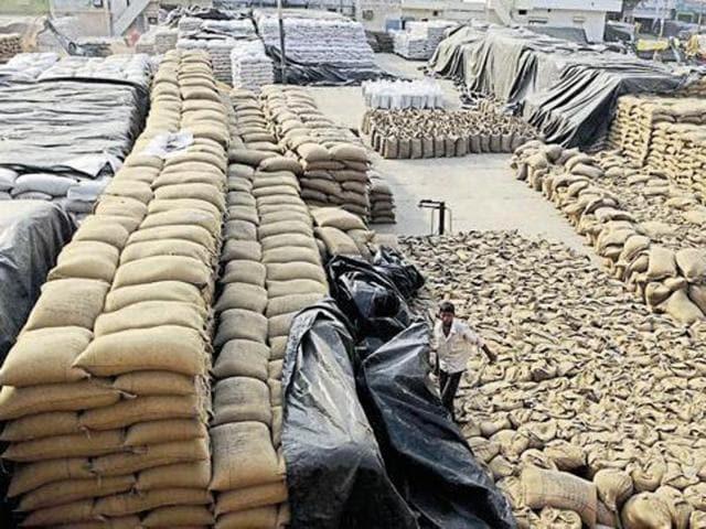 Markfed,high court,procurement of crops