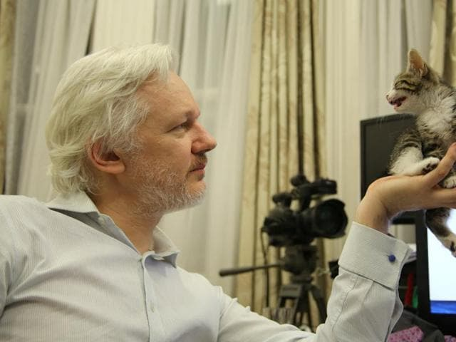 WikiLeaks founder Julian Assange holds up his new kitten at the Ecuadorian Embassy in central London, Britain.