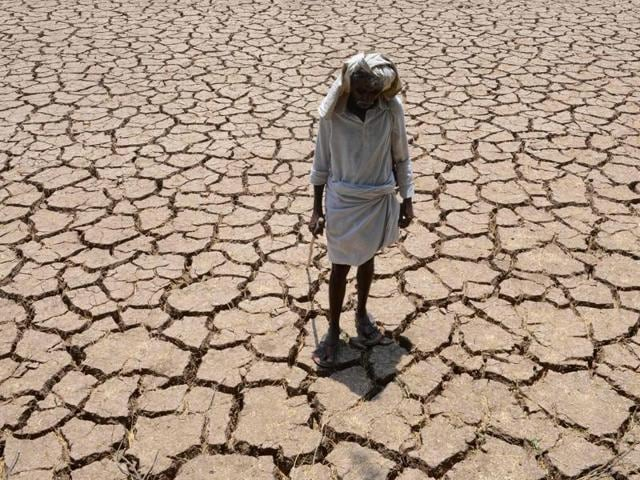 A farmer poses in his dried up cotton field at Chandampet Mandal in Nalgonda east of Hyderabad.