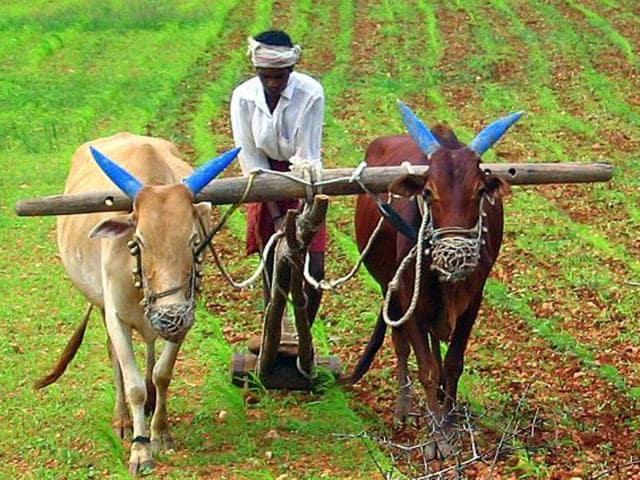 Hackathon,Farming,India