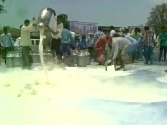 Dairy farmers of Bargarh district spilled hundreds of litres of milk on Friday to protest against the Odisha State Cooperative Milk Producers Federation.