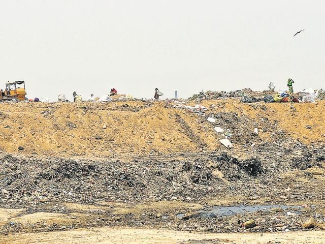 Nearly 20-ft gigantic heap of garbage is lying in the open at the dumping ground spread over 45 acres in Dadumajra.