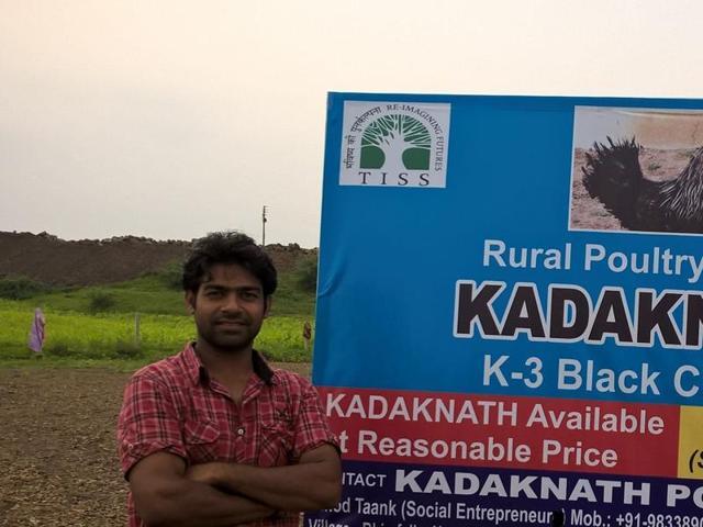 MP: Entrepreneurs refuse jobs, teach farmers to breed Kadaknath