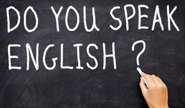 English,foreign language,govt school