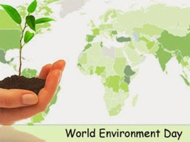 essay on eco friendly environment makes survival happy Creating more nurturing environments for provides a nurturing environment one of the most family-friendly, nurturing support makes our work.