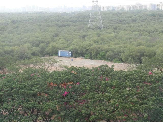 HT had reported on May 6 that residents from Saraswati Complex, Dahisar (East), and the local corporator had complained about 25 buses parked on a six-acre plot that was created by destroying mangroves.
