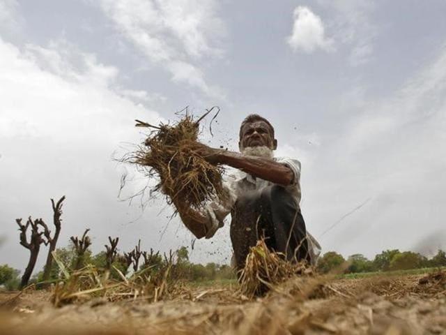 Monsoon,IMD,India Meteorological Department