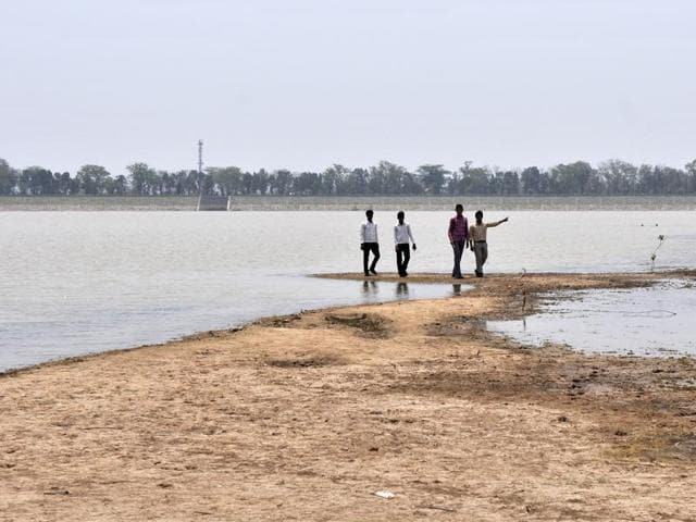A dried-up patch of Sukhna Lake in Chandigarh on Thursday.