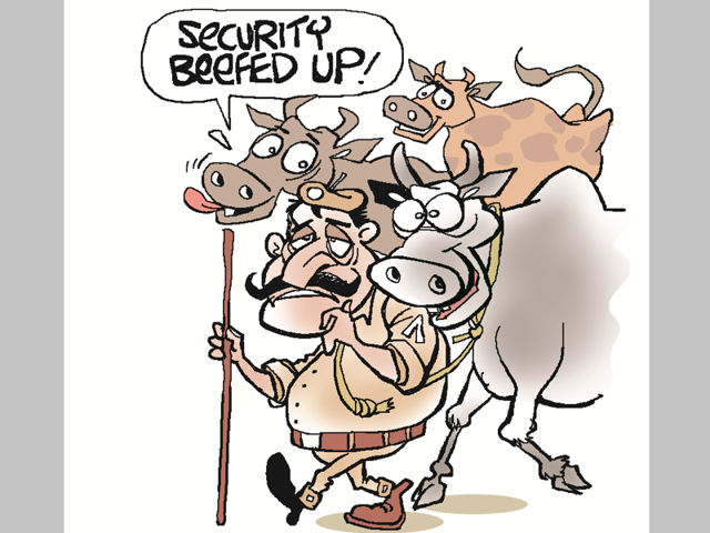 Nainpur police in the tribal-dominated Mandla district have turned graziers to satiate the hunger of the 100-plus cows seized from alleged cow smugglers.