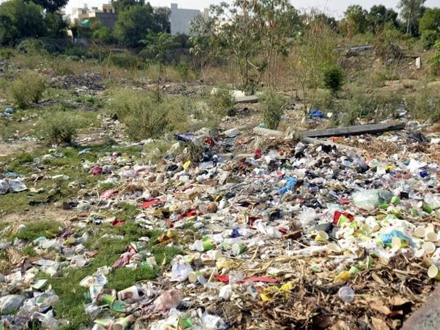 Garbage dumped on a vacant plot at Ranjit Avenue in Amritsar on Sunday.