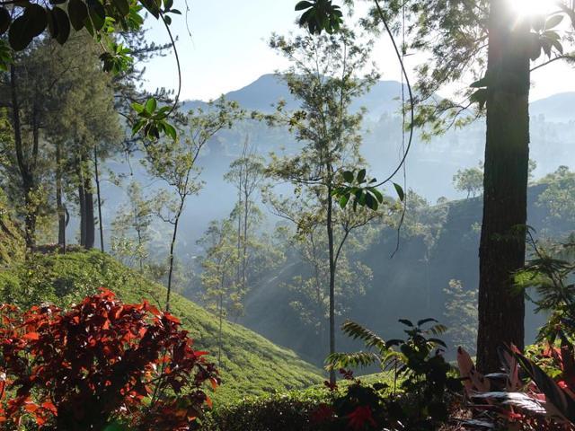 Here's what makes Sri Lanka such a charming tourist destination