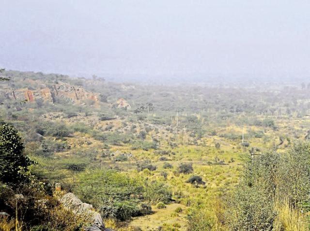 Aravallis,water pits for animals,Manesar
