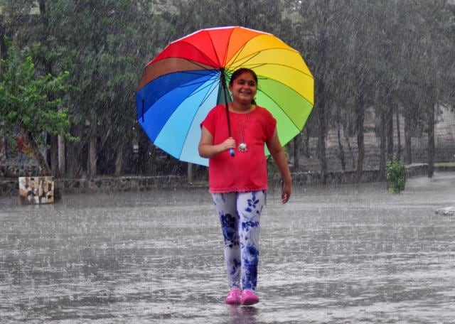 Chandigarh recorded a maximum temperature of 34 degrees Celsius, five degrees below normal. It also received 3 mm of rainfall.
