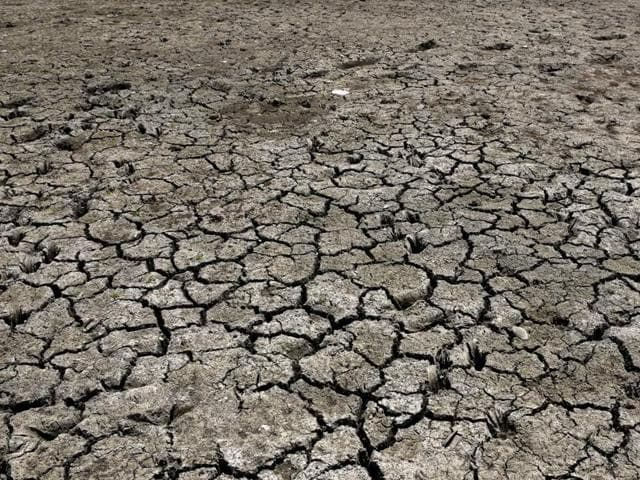 On Monday, the HC had directed the government to submit details of the total number of people who have migrated from drought-affected areas in the state to other parts in Maharashtra, and the steps that it has taken so far to help them.