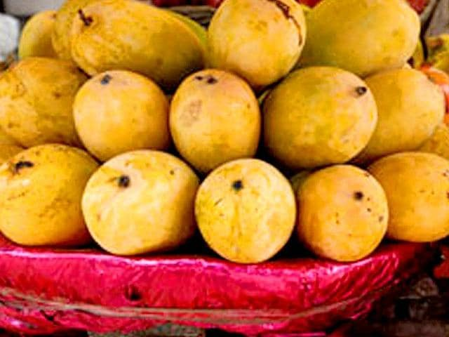 The Bhagalpur administration, which traditionally sent gift packs containing Zardalu mangoes on the state government's behalf, feels the produce this year is not up to the mark.
