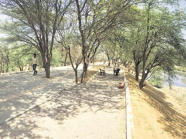 Gurgaon,Huda,Chakkarpur