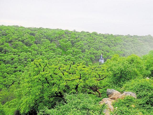 environment,Haryana government,mangar Bani