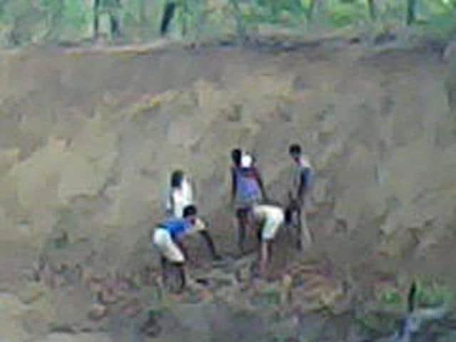Gond tribal