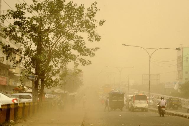 While we might enjoy dust storms, it usually means trouble for birds.