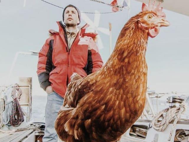 Guirec Soudee,Monique the hen,Globetrotting hen