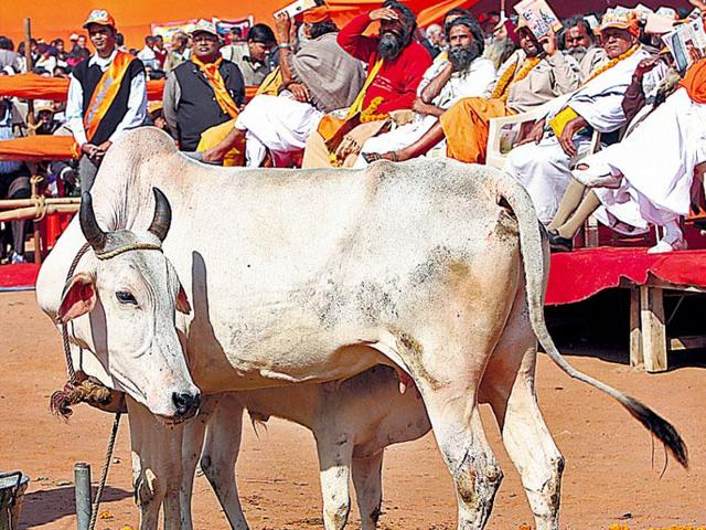 A senior RSS functionary said contemporary problems of global warming, drought and declining food production can be mitigated by encouraging bovine rearing.