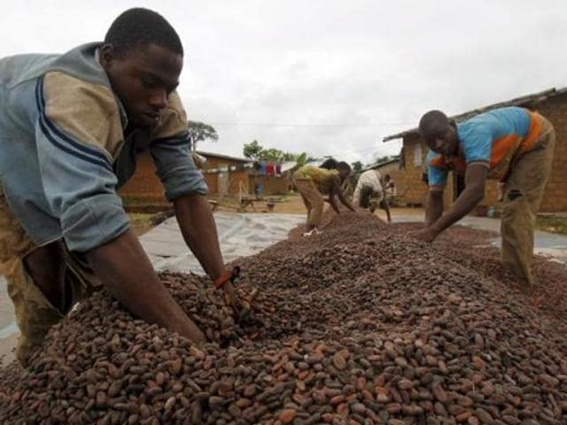Workers dry cocoa beans in the village of Goin Debe, Blolequin department, western Ivory Coast.