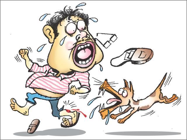 Dog bites,Bihar dogs,fever of unknown origin