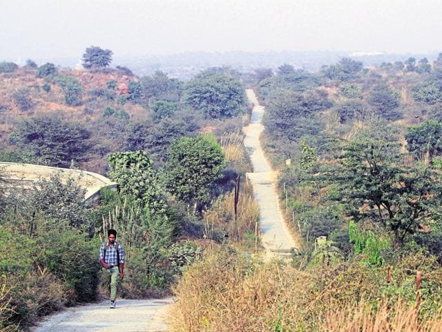 The interpretation centre and cafe are proposed to be built inside the bio-diversity park in Gurgaon.