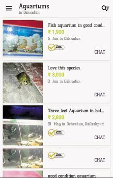Uttarakhand boy caught selling exotic Indian Roof turtles on OLX com