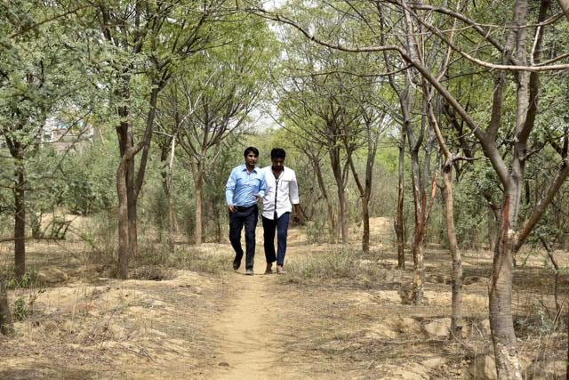 The department aims to construct 2.5 kilometre-long jogging track that will run along the water body in Jaunapur.