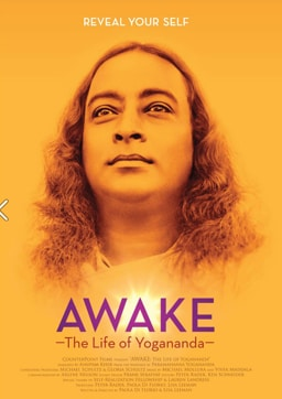 A poster for the film Awake.