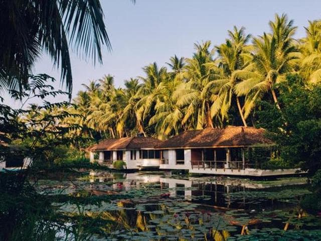 A slice of tropical heaven, Dindi is a lazy village nestled on the intersection between the mighty Godavari River and the Bay of Bengal.