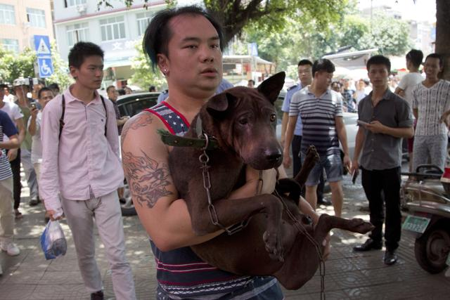 A dog lover activist, in blue hat, is confronted by dog sellers and local people as he is urged to leave the market during a dog meat festival in Yulin in south China's Guangxi Zhuang Autonomous Region.