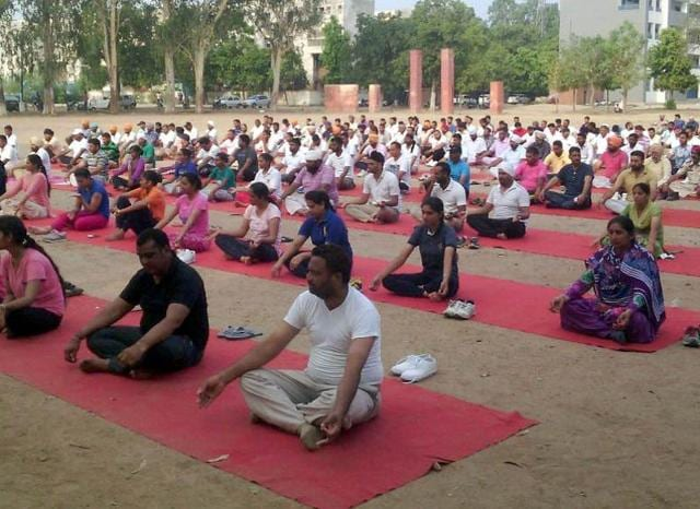 Cops performing yoga at Police Lines in Ludhiana on Wednesday.