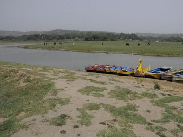 With a view to revive the lake before monsoon, the tourism department has already started clearing the nearby areas and also cleaning the silt deposited in the lake's bed so that rainwater can be stored.