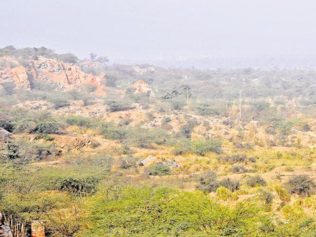 Aravallis,Gurgaon,Haryana