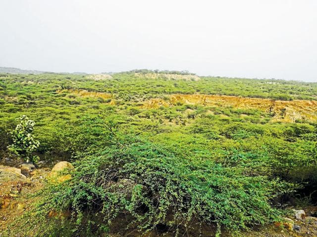 Land ownership rules vary in all these villages, and if one goes by environment and other laws, investing in land over here is fraught with risks.