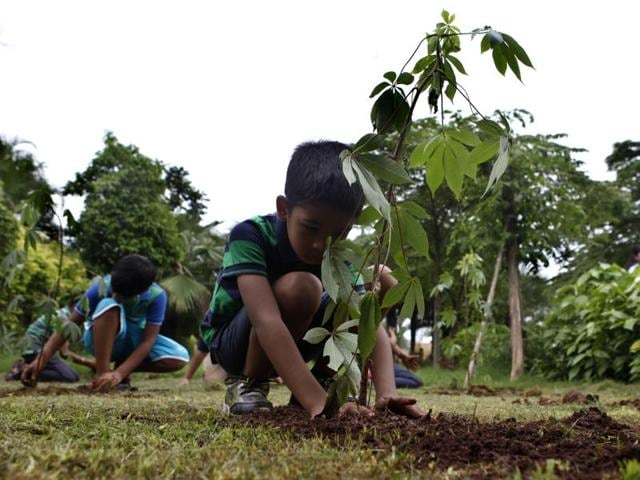 Maharashtra plantation drive: 3 crore saplings to be ...