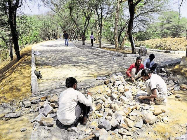 The ongoing construction work at the Chakkarpur bundh. The bundh is a natural groundwater recharge zone near DLF Phase I.