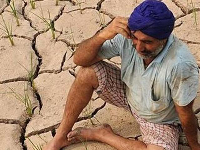 Punjab farmers get one more month to repay loans