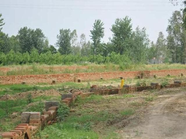 A barren agriculture land that was shown as a residential colony to get higher compensation, in Piplanwala village on the outskirts of Hoshiarpur.