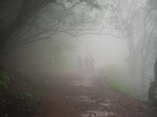Live up the Mumbai monsoon with a rain marathon, bike ride and more