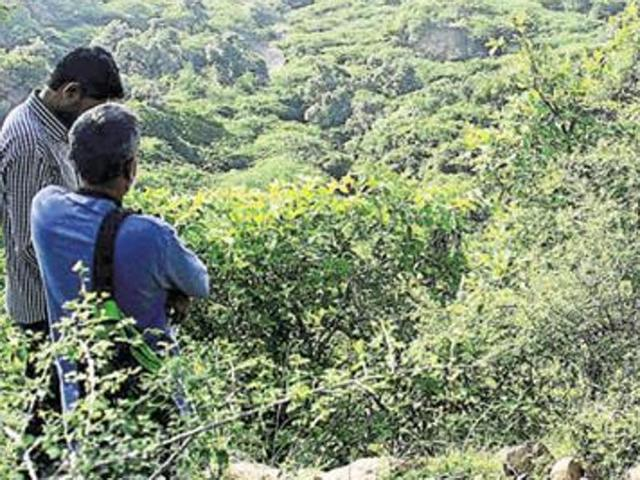 After 25 yrs, forest dept reclaims encroached land
