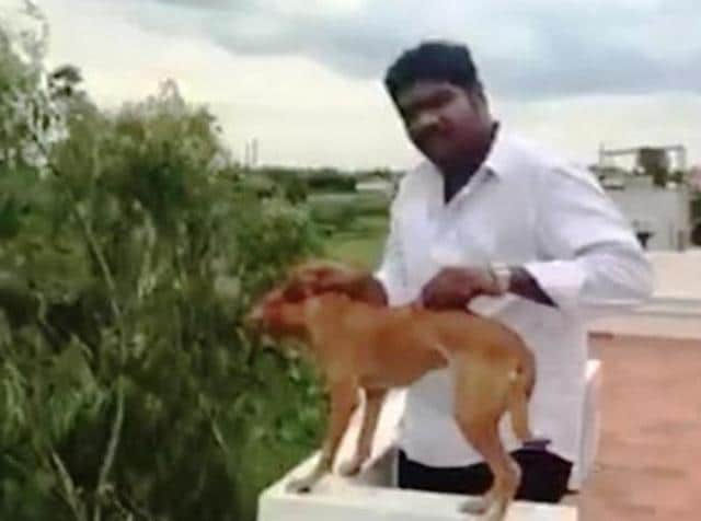 Gautman Sudarshan threw the dog off the roof of a five-storey building while his friend filmed the act. (Video grab)