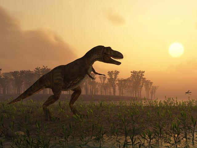 The wipeout of dinosaurs, said a trio of US-based researchers in the new paper, was caused by two periods of global warming -- the first sparked by monster volcanic eruptions in what is India today, and the second by the space rock impact itself.