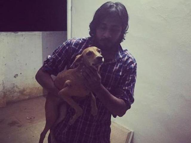 Dog thrown off roof in Chennai alive, undergoing treatment: Police