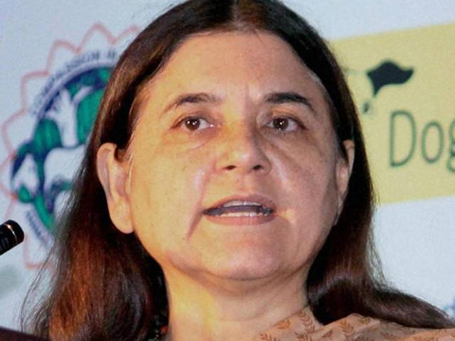 Govt will help women trapped in abusive marriages to NRI men: Maneka