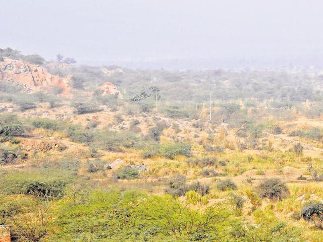 NGT,National Green Tribunal,Gurgaon forest