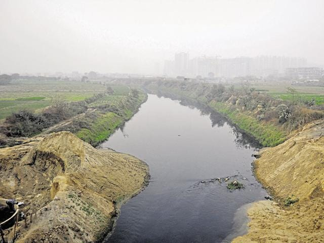 The forest department had got transfer of the land, meant for developing a bird sanctuary near the river, 20 years ago.